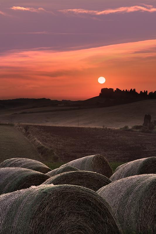 Orciano Pisano- Toscana (PI)
