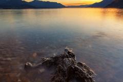 """Lago dorato"""