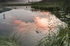 Titolo: Tramonto in palude - Valganna (VA)