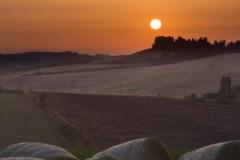 Titolo: Tramonto toscano -  Orciano Pisano (PI)